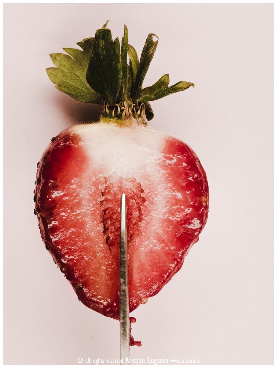 Strawberry fields 003