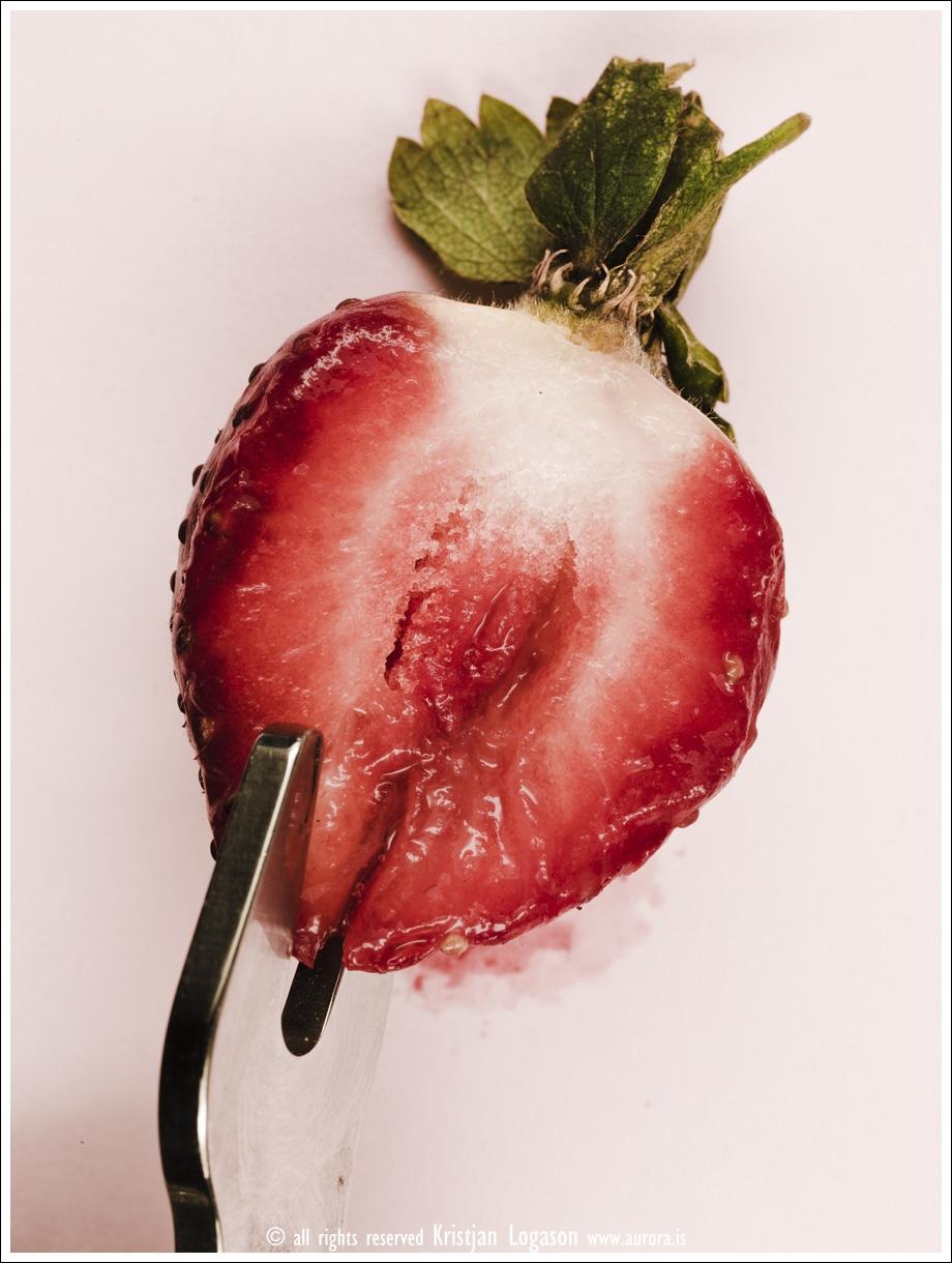 Strawberry fields 011