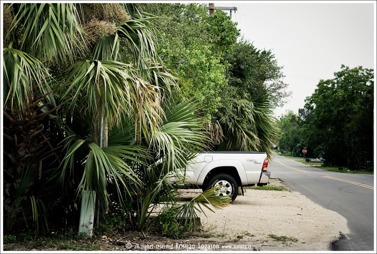 Part of a pickup standing out from the trees on a street in Apalachicola in Florida