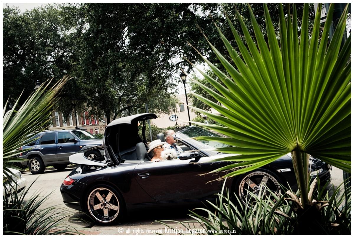 Dog in a convertible in Savannah, Georgia
