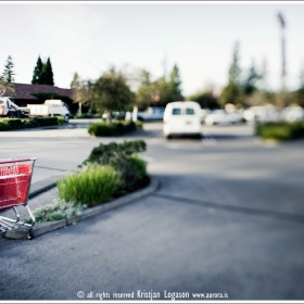 Shoping cart on a patkinglot